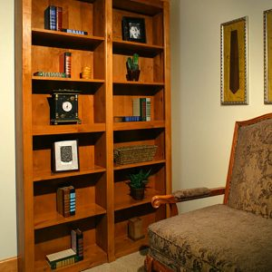 Secret doors. Doors stylized as a bookcase.